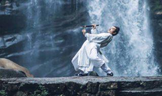 Krása pohybu v kung-fu